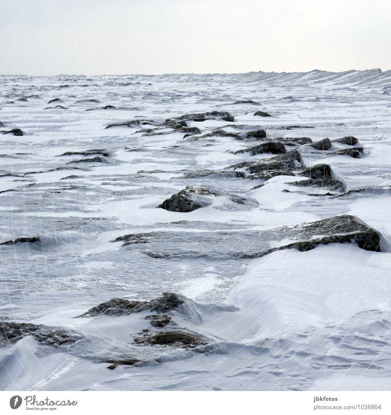 Nordsee gefroren Umwelt Natur Landschaft Urelemente Luft Wasser Himmel Wolkenloser Himmel Horizont Winter Schönes Wetter Unwetter Eis Frost Schnee Küste Strand