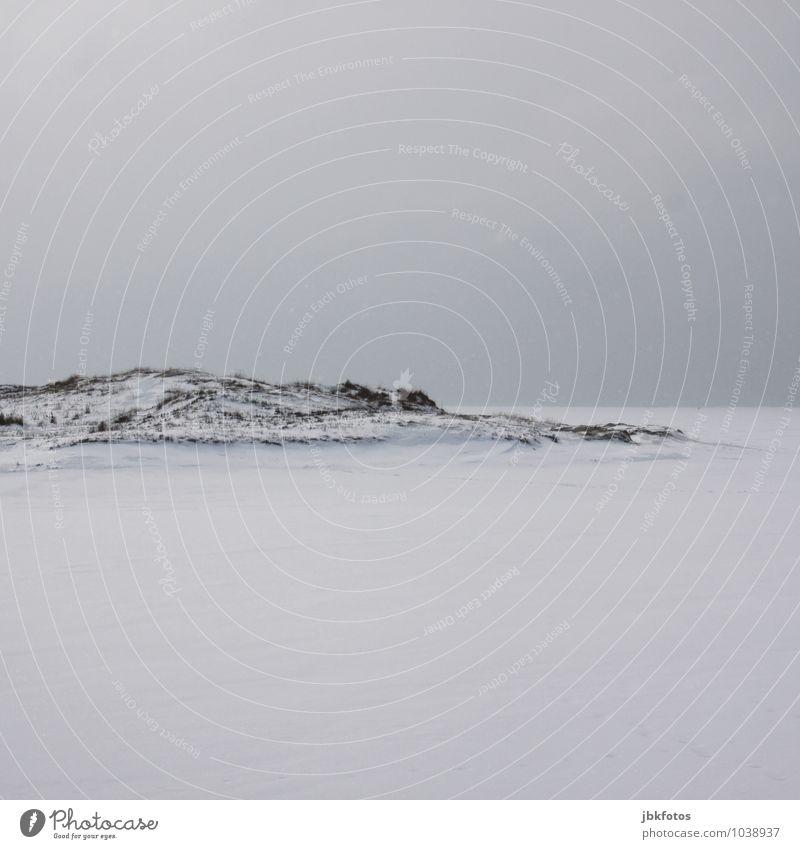 --- Umwelt Natur Landschaft Pflanze Urelemente Wasser Himmel Wolkenloser Himmel Horizont Klima Schönes Wetter Eis Frost Gras Küste Seeufer Nordsee Ostsee Meer