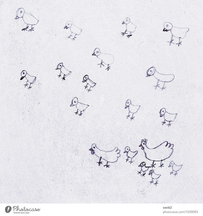 Familienglück Familie & Verwandtschaft klein Kunst Zusammensein Tiergruppe einfach niedlich Papier viele Zusammenhalt Zeichnung Kunstwerk Entwurf Haushuhn Küken Nachkommen