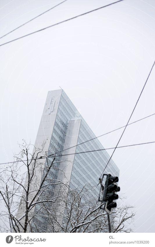 hochgucken Himmel Natur Stadt Baum Winter kalt Umwelt Architektur Schnee Wege & Pfade Gebäude Eis Wetter Business Verkehr Hochhaus
