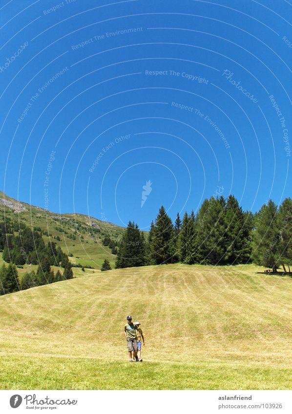 gelb, die Stoppelfelder Sommer wandern Feld Hügel Gelände Natur Baum Wald Holzmehl Himmel blau hill blue field hiking trees forrest sky Außenaufnahme