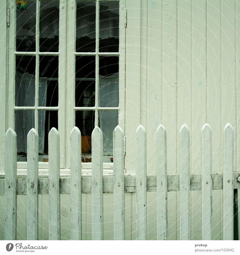Zaunkönig Haus Einfamilienhaus Holzbrett Fenster Holzhaus Streifen weiß Skandinavien gepflegt Sauberkeit aufräumen sortieren Detailaufnahme schön Sicherheit