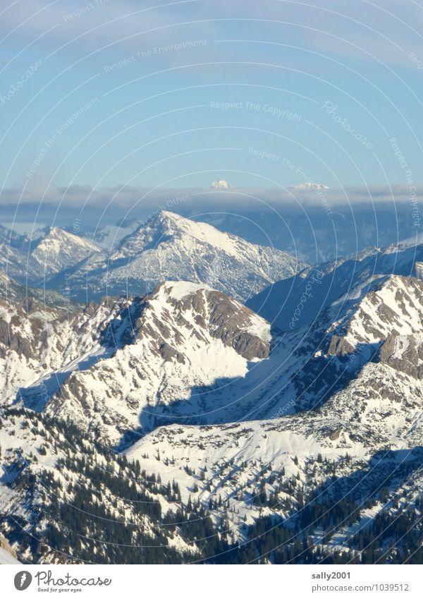 Überblick... Natur Landschaft Wolken Sonnenlicht Winter Schönes Wetter Schnee Wald Alpen Berge u. Gebirge Gipfel Schneebedeckte Gipfel Erholung Ferne gigantisch