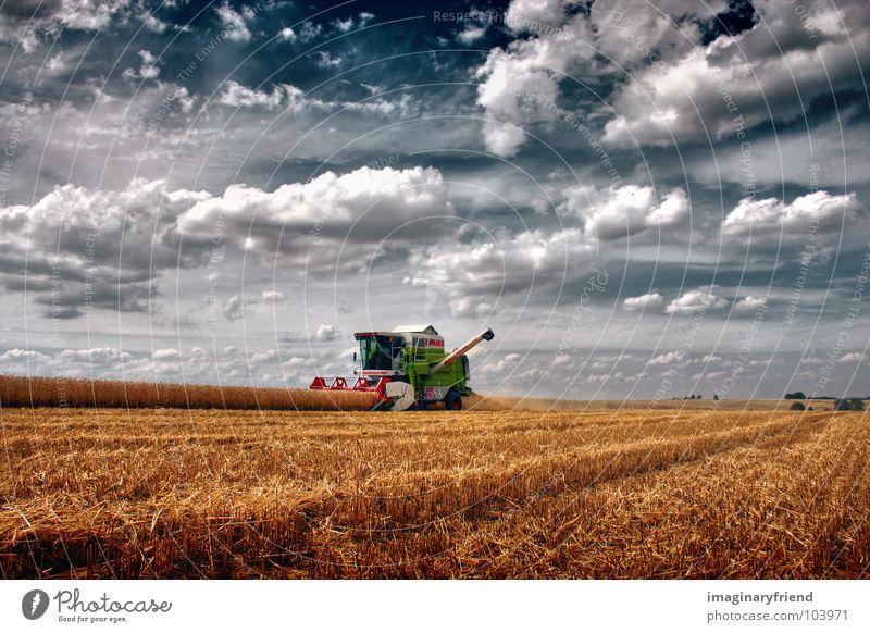 love the country Himmel Sommer Wolken Landwirtschaft Landschaft Feld Länder Amerika Ernte Kornfeld Jahreszeiten Mähdrescher