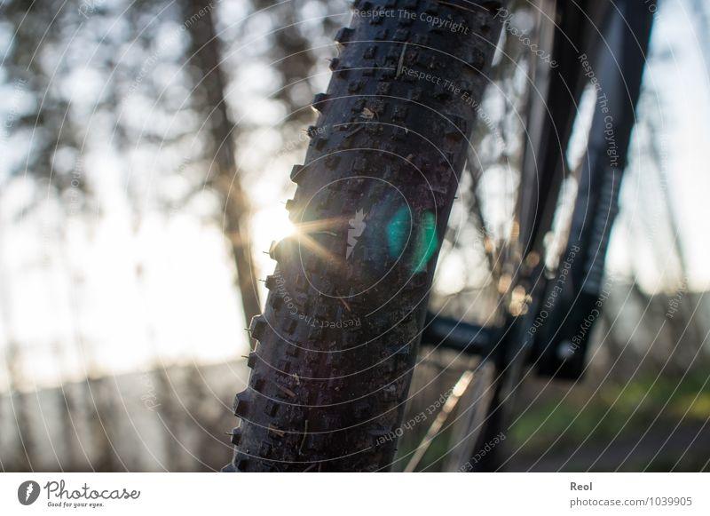 Radtour IV Freizeit & Hobby Freiheit Expedition Fahrradtour Fahrradfahren Fahrradreifen Mountainbiking Mountainbike Bewegung Fitness sportlich Außenaufnahme