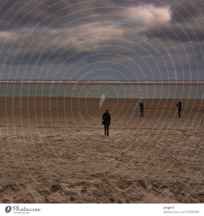 the people Umwelt Natur Landschaft Sand Himmel Wolken Winter Wetter Küste Strand Nordsee Insel Blick stehen blau braun gold grau schwarz weiß Vorsicht