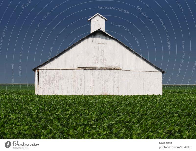 Rural Barn Himmel Ernährung Bauernhof Länder stark Landwirtschaft Holzmehl
