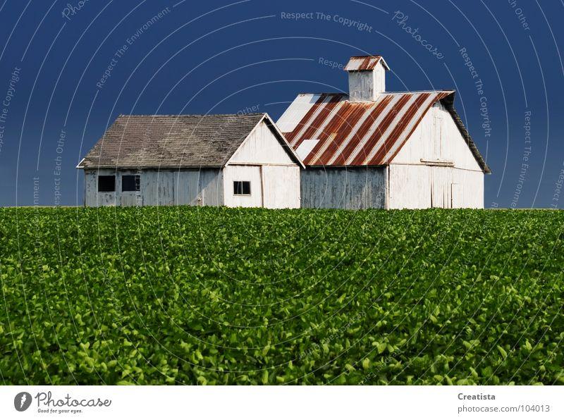 Rural Barns Himmel Ernährung Bauernhof Länder stark Landwirtschaft Holzmehl