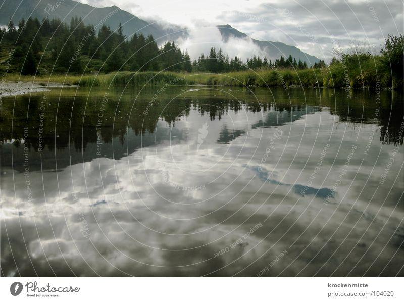 Kraftort Wasser ruhig Wolken Wald Berge u. Gebirge See Küste Nebel Wetter Tourismus Schweiz Tanne Unwetter Gebirgssee Kanton Graubünden