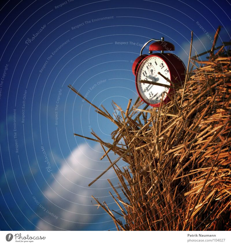 Erntezeit IV Wecker Uhr ticktack retro Zeit rot Stroh Strohballen strohig Wolken Landwirtschaft ländlich Himmel ticken Uhrenzeiger zeitlich blau Amerika