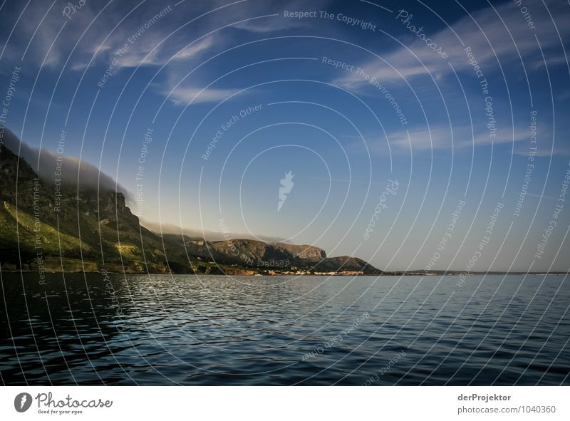 Mallorca von seiner schönen Seite 5 Natur Ferien & Urlaub & Reisen Pflanze Sommer Meer Landschaft Wolken Tier Ferne Umwelt Berge u. Gebirge Gefühle Küste