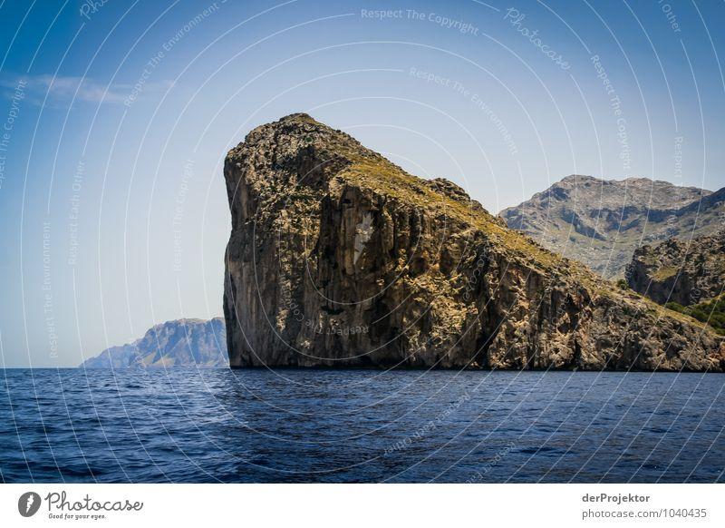 Mallorca von seiner schönen Seite 2 Natur Ferien & Urlaub & Reisen Pflanze Sommer Meer Landschaft Freude Tier Ferne Umwelt Gefühle Küste Freiheit Felsen
