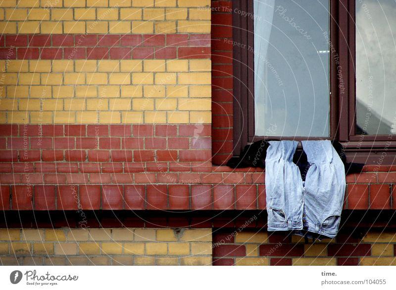Mal wieder gut abhängen - II Muster Reflexion & Spiegelung Erholung Dienstleistungsgewerbe Himmel Fenster Hose Jeanshose Glas Backstein gelb rot Wand trocknen