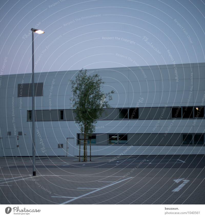 links. Himmel Stadt Pflanze Baum Haus Fenster Wand Straße Architektur Wege & Pfade Gebäude Mauer Lampe Fassade leuchten Tür