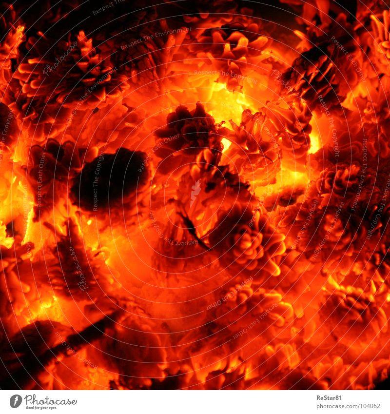Inferno brennen glühen Zapfen Quadrat Grill glänzend Außenaufnahme rot Feuer Brand Kunst Makroaufnahme Nahaufnahme Brandasche Natur Wärme Farbe leuchten heiß