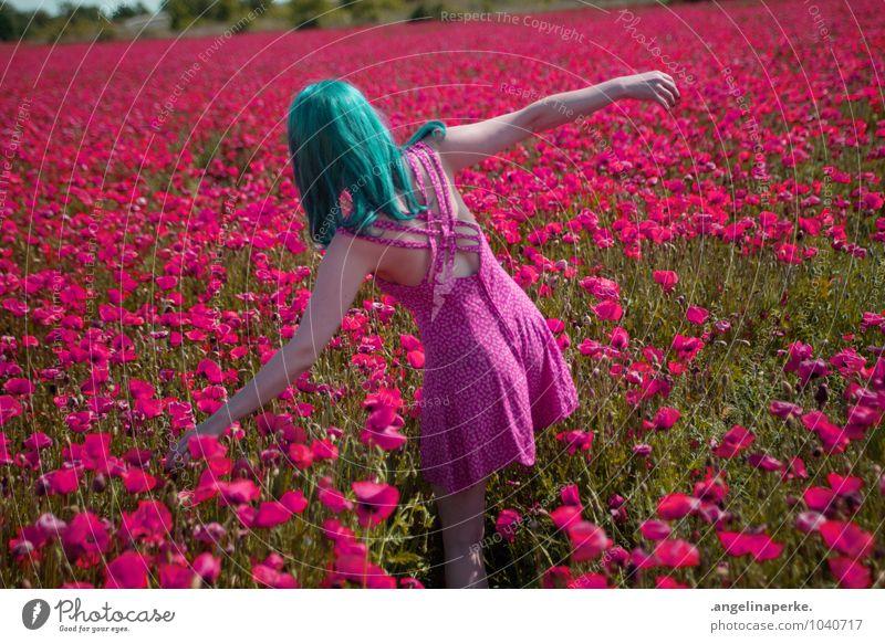 wenn aufeinmal die welt pink ist.. schön Sommer Freude Mädchen Wiese rosa Feld Rücken Kleid Mohn Valentinstag Perücke