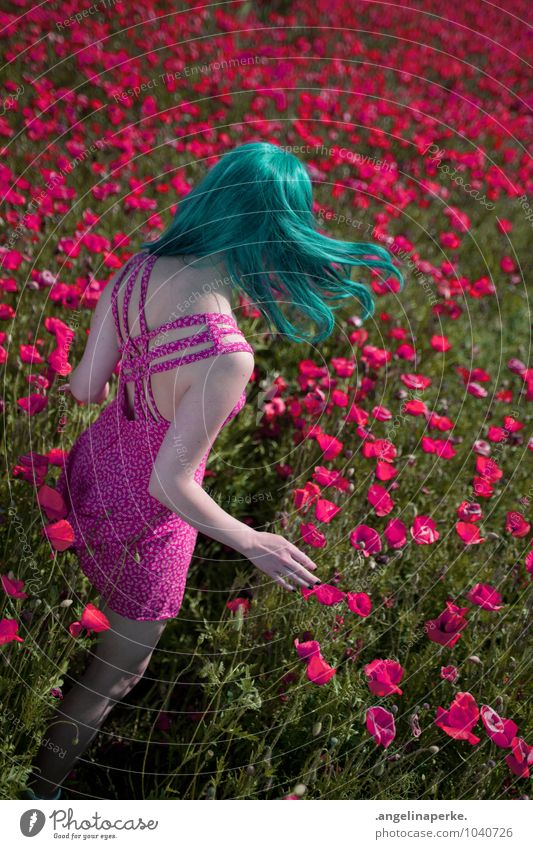 wenn aufeinmal die welt pink ist.. Frau Sommer Wiese Feld Wind Rücken Mohn Valentinstag Perücke