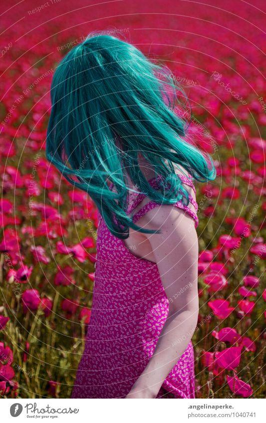 vom winde verweht feminin 1 Mensch Frühling Sommer Schönes Wetter Nutzpflanze Wildpflanze Feld Kleid Freundlichkeit Fröhlichkeit frisch Glück schön Kitsch