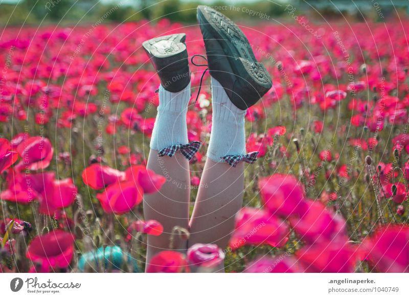 wenn aufeinmal die welt pink ist.. Mohn Feld Wiese rosa Blüte Blume Natur Beine Schuhe Schleife Freude Ausgelassenheit Sommer Mädchen Valentinstag