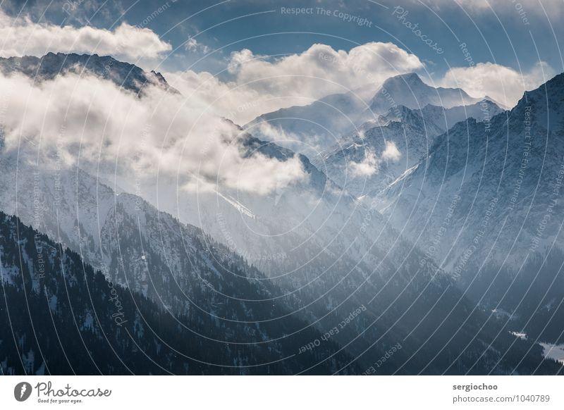 Gipfel in den Wolken Umwelt Natur Landschaft Himmel Sonnenlicht Winter Klima Schönes Wetter Wind Nebel Eis Frost Schnee Schneefall Wald Hügel Felsen