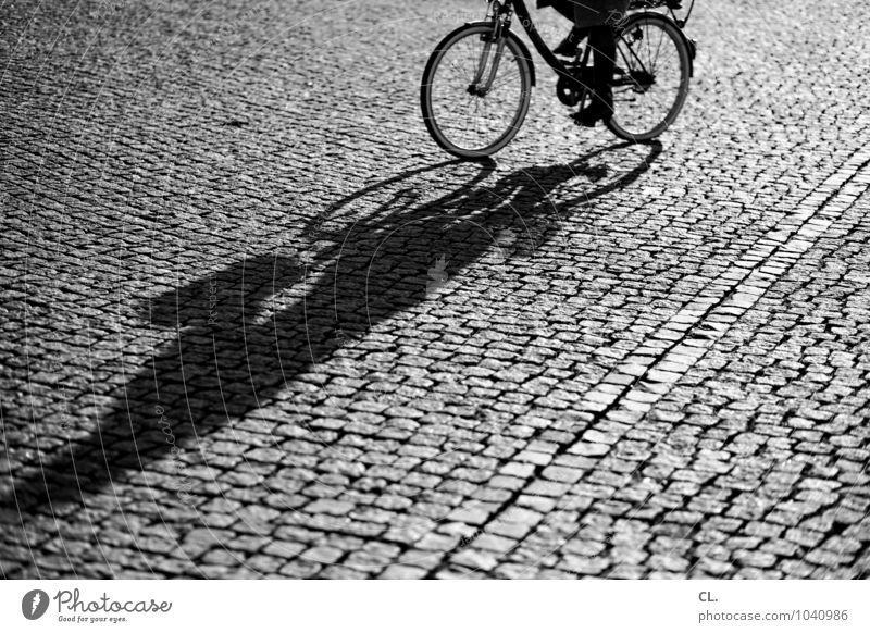 radeln Mensch Ferien & Urlaub & Reisen Sommer Erwachsene Leben Straße Bewegung Wege & Pfade Gesundheit Freizeit & Hobby Verkehr Fahrrad Platz Schönes Wetter