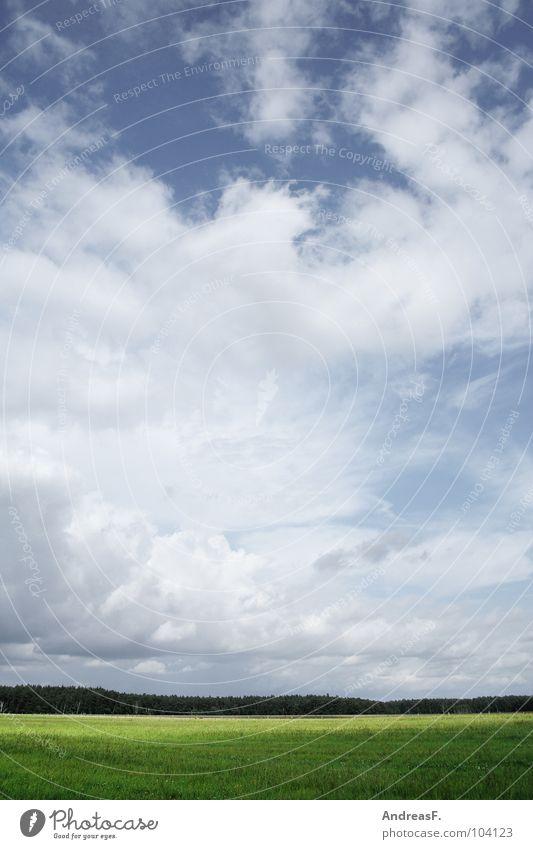 Landschaft Feld Landwirtschaft Wolkenhimmel Sommer grün Gras Wald Waldrand Schönes Wetter Ferne Luft Umwelt Wiese Deutschland Himmel Amerika blau schleierwolken