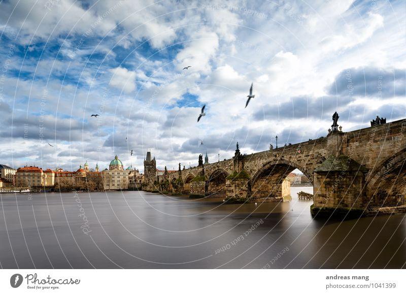 Überflieger Himmel Ferien & Urlaub & Reisen Stadt alt Wolken Architektur Bewegung Wege & Pfade fliegen Vogel Tourismus Kirche Zukunft Schönes Wetter Brücke