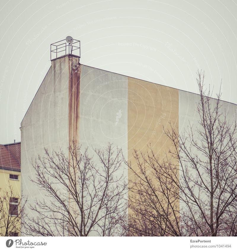 Hinterhof Häusliches Leben Haus Himmel Baum Stadt Bauwerk Gebäude Architektur Mauer Wand Fassade Dach Satellitenantenne Linie Streifen kalt gelb grau weiß