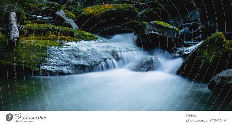 little niagara falls =) Natur Wasser Herbst Moos Wald Flussufer Bach Flüssigkeit frisch nass blau gelb grün schwarz weiß Langzeitbelichtung Farbfoto