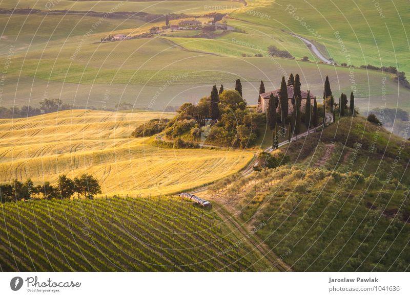 Toskanisches Haus auf den nebligen Hügeln Sommer Garten Natur Landschaft Sonnenaufgang Sonnenuntergang Frühling Herbst Nebel Baum Wiese Feld grün Abenteuer