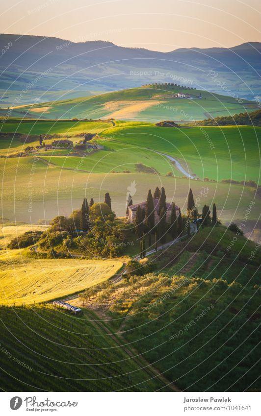 Toskanisches Haus auf den nebligen Hügeln ruhig Sommer Sonne Umwelt Natur Landschaft Pflanze Himmel Wolken Baum Gras Wiese Straße natürlich gelb grün Einsamkeit