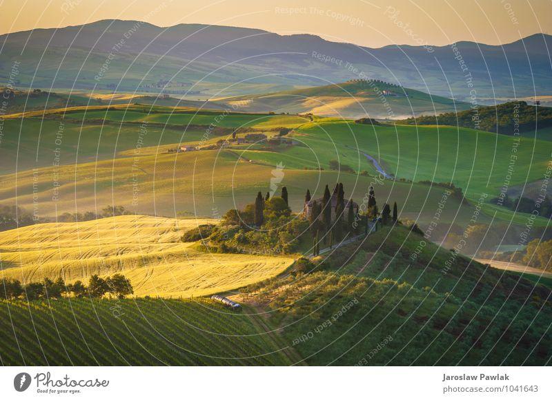 Toskanisches Haus auf den nebligen Hügeln Himmel Natur Ferien & Urlaub & Reisen schön grün Sommer Sonne Baum Landschaft ruhig gelb Herbst Wiese Gras Frühling