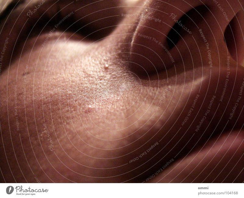 Angst im Kofferraum Gesicht Mund Haut Nase Lippen Tierhaut Wange Panik Nervosität Anschnitt Nasenloch Gesichtsausschnitt