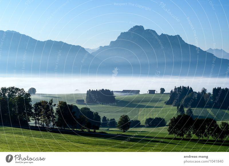 Nebeliger Morgen Ausflug Ferne Umwelt Natur Landschaft Wolkenloser Himmel Herbst Baum Wiese Hügel Alpen Berge u. Gebirge Gipfel Tal blau grün
