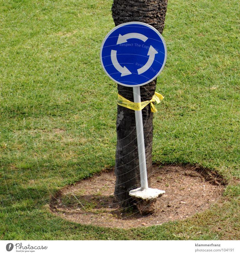 Wirres Zeug Baum Freude Wiese Gras Sand lustig Verkehr Kreis rund Schnur Bildung Rasen festhalten Verbindung Palme durcheinander