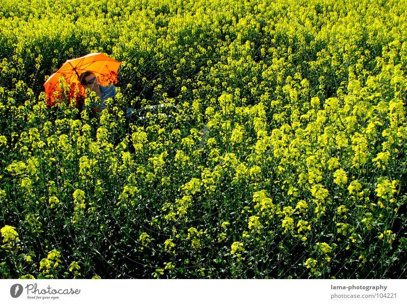 Chill Out genießen Sonnenbad ruhig träumen liegen Sommer Raps Rapsfeld Feld Wiese Ackerbau Landwirtschaft Frühling springen Ähren gelb Blume Erholung