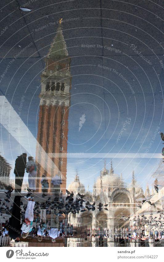 Gespiegelte Welt II Mensch Wasser Himmel blau Religion & Glaube orange Platz Turm Italien Verkehrswege Taube Dom Venedig Gotteshäuser verkehrt