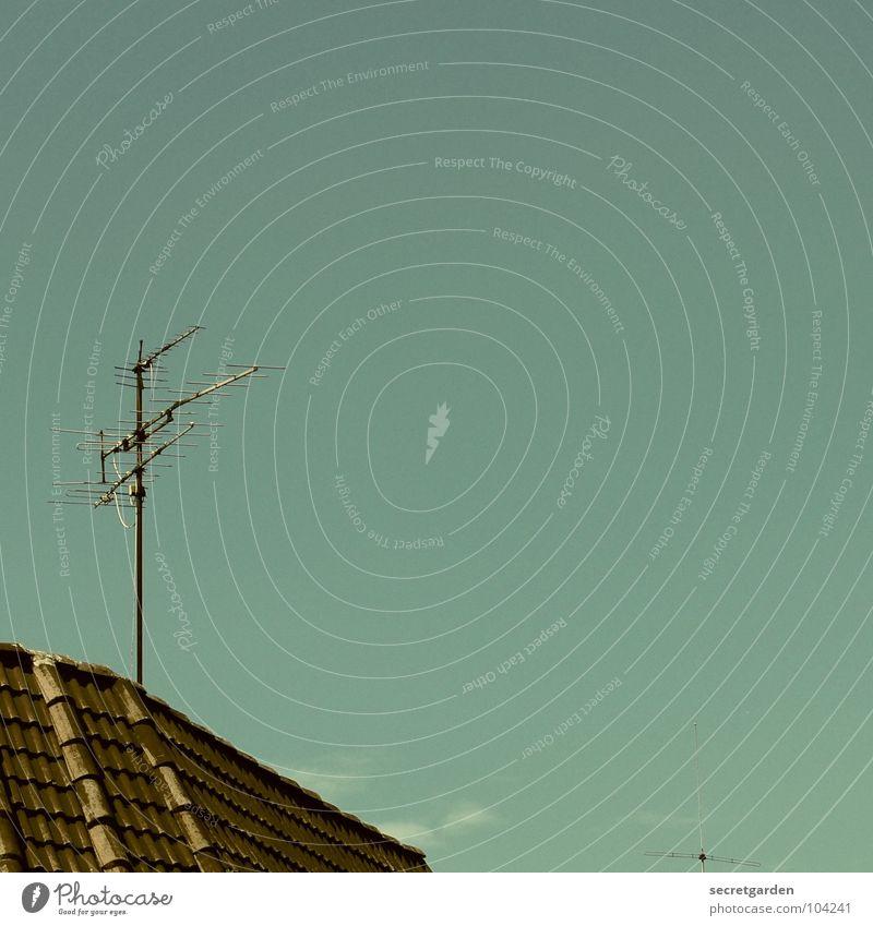 sie spatzen vom dach pfeifenn es Dach Haus Raum Dachziegel Antenne Sommer Außenaufnahme Schönes Wetter Himmel blau Ecke fernsehen. telekomunikation