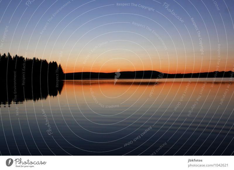 Bras d'Or Lake Umwelt Natur Landschaft Urelemente Wasser Himmel Horizont Sonnenaufgang Sonnenuntergang Sonnenlicht Sommer Wetter Schönes Wetter Pflanze See
