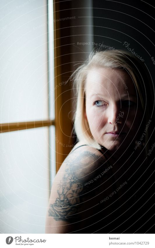 Schatten und Licht Mensch Jugendliche schön Junge Frau Einsamkeit ruhig 18-30 Jahre dunkel Fenster Gesicht Erwachsene Leben Traurigkeit feminin Stil Denken