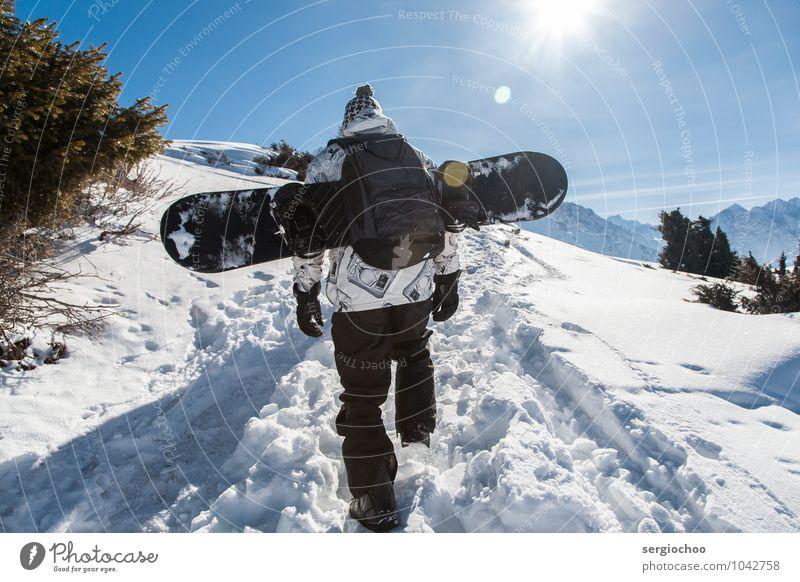 Mensch Natur Jugendliche Mann Pflanze Sonne Baum Junger Mann Landschaft Ferne Winter 18-30 Jahre Berge u. Gebirge Erwachsene Umwelt Schnee