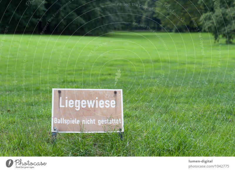 Liegewiese Ballsport Baum Park Wiese Schilder & Markierungen nass grün Verbote Berlin feucht gepflegt hintergrundunschärfe Querformat rasen schild Tiergarten