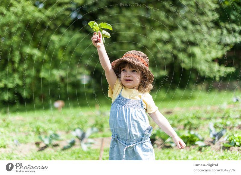 Kind hält Radieschen hoch Mensch Kind schön Sommer Freude lachen Garten Feld stehen Fröhlichkeit Lebensfreude niedlich Gemüse Ernte Hut Kleinkind