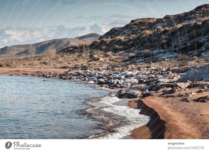 zugefrorener Strand Umwelt Natur Landschaft Pflanze Sand Wasser Himmel Wolken Horizont Winter Klimawandel Schönes Wetter Eis Frost Schnee Baum Sträucher Hügel
