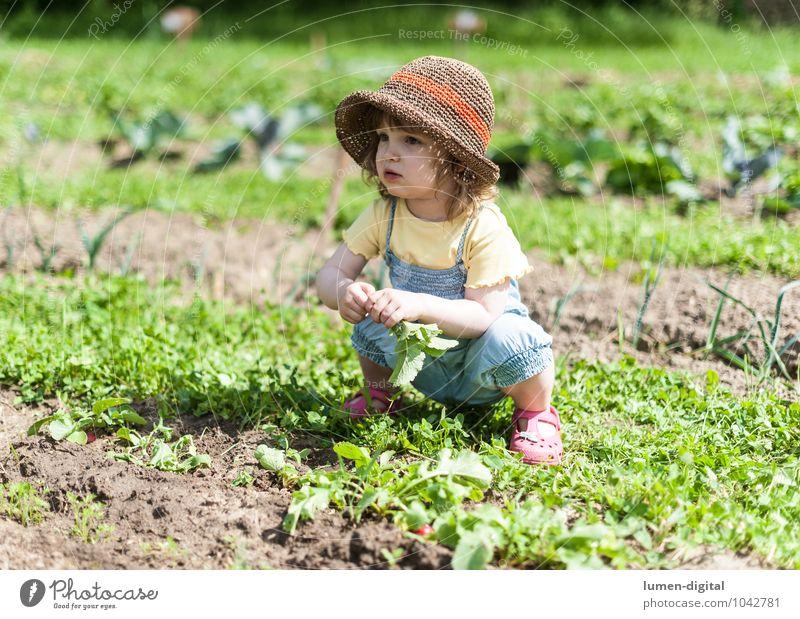 Mädchen im Feld Kind Sommer Freude lachen Garten Kindheit Gemüse Ernte Hut Kleinkind Beet Gartenarbeit hocken ducken