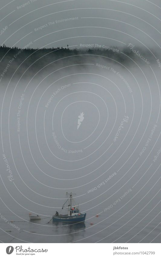 Der Nebelfischer Umwelt Natur Landschaft Urelemente Wasser Himmel Gewitterwolken Sonnenaufgang Sonnenuntergang Wetter schlechtes Wetter Unwetter Wind Sturm