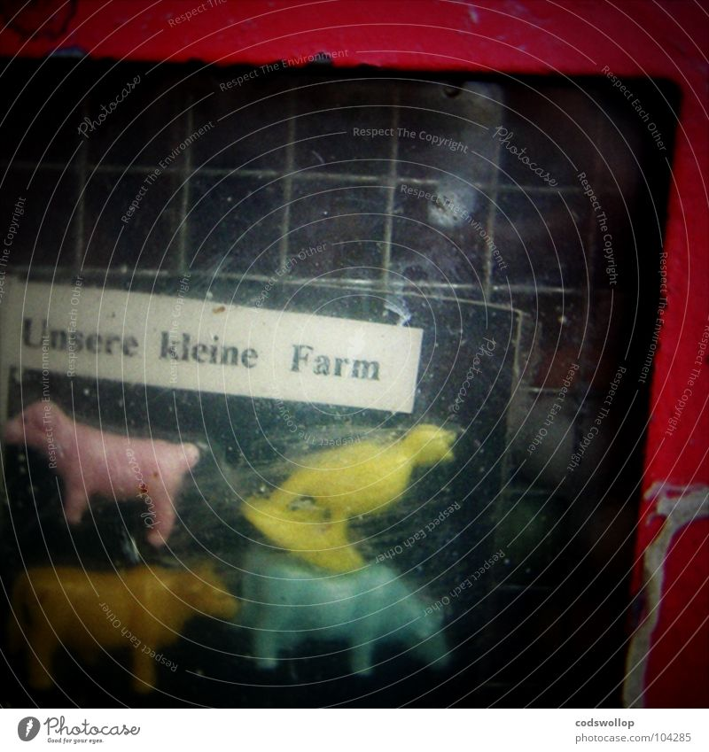 bubblegum bauernhof Gastronomie Kindheit Landwirtschaft Bauernhof Kuh Süßwaren Schaf Überraschung Bulle Kaugummi Automat Moskau Rind Acryl Kaugummiautomat