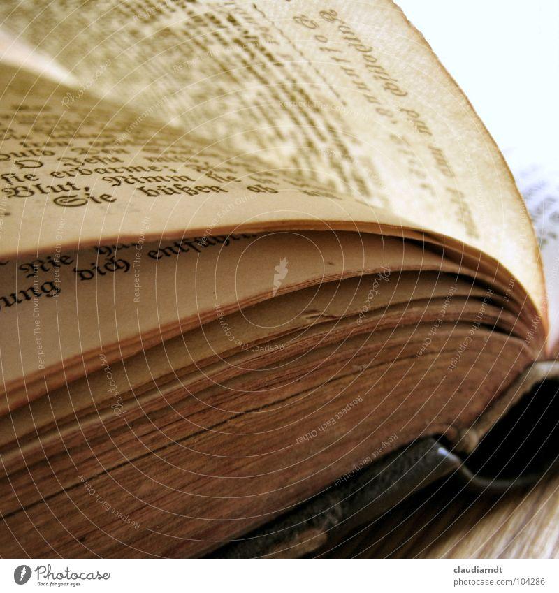 Damals alt Buch Papier lesen Schriftzeichen kaputt Verfall Vergangenheit Seite Gebet durchsichtig Sammlung Tradition Märchen Druck singen