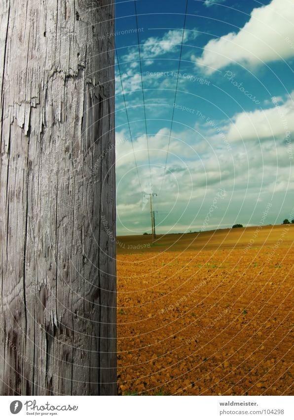 An einem Spätsommertag Holz Strommast Leitung Elektrizität Hochspannungsleitung Kabel Stahlkabel Energiewirtschaft Sommer Herbst Himmel Wolken Feld Erde