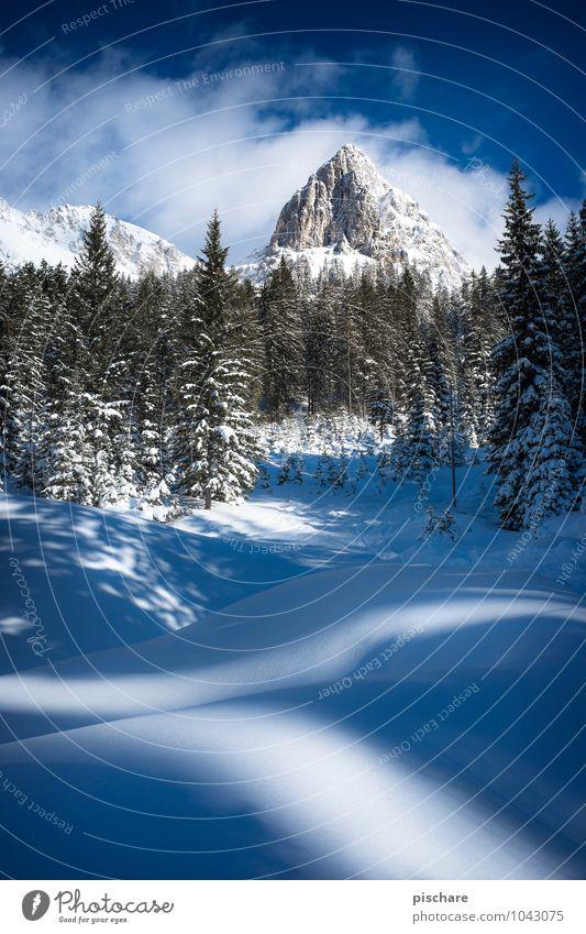 Admonter Kalbling Natur Landschaft Winter Schönes Wetter Schnee Berge u. Gebirge Schneebedeckte Gipfel kalt Abenteuer Österreich Farbfoto Außenaufnahme